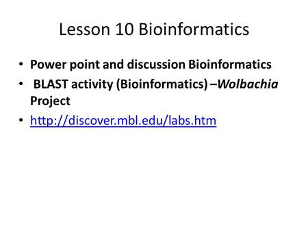 Lesson 10 Bioinformatics Power point and discussion Bioinformatics BLAST activity (Bioinformatics) –Wolbachia Project