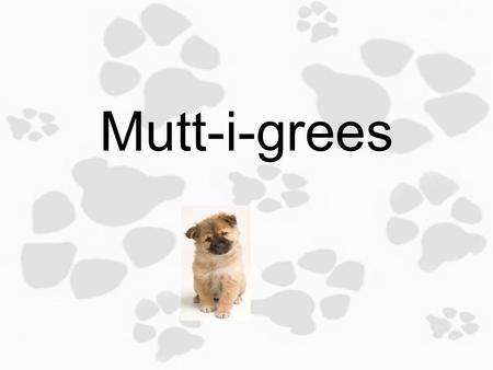 Mutt-i-grees 1.1 Learning from Mutt-i-grees Objective: Today you will rationalize and discuss your unique traits, as well as traits of Mutt-i-gree dogs.