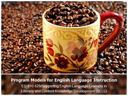 Program Models for English Language Instruction