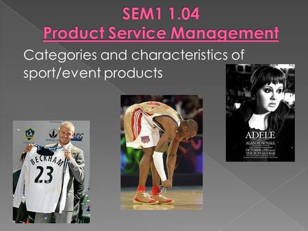 SEM Product Service Management