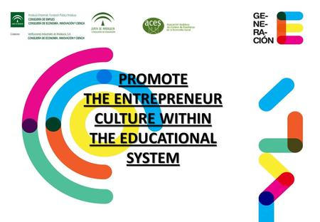 PROMOTE THE ENTREPRENEUR CULTURE WITHIN THE EDUCATIONAL SYSTEM.