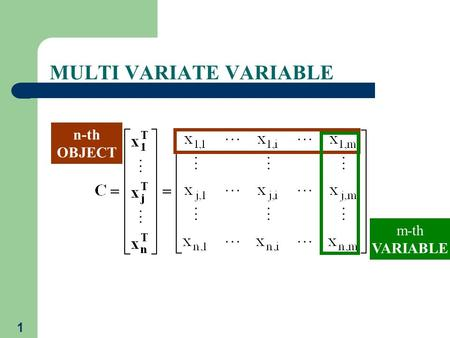 1 MULTI VARIATE VARIABLE n-th OBJECT m-th VARIABLE.