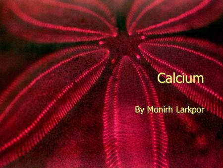 Calcium By Monirh Larkpor Element  A white metallic element that burns with a brilliant light.  It is the fifth most abundant element in the earth's.