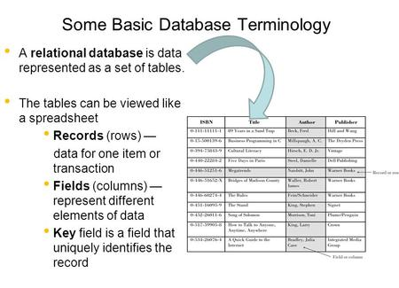 Some Basic Database Terminology