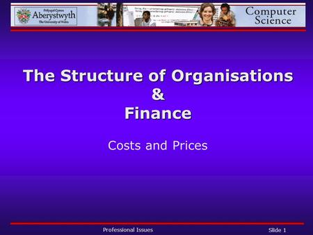 Professional Issues Slide 1 The Structure of Organisations & Finance Costs and Prices.