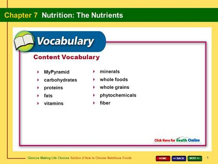 Glencoe Making Life Choices Section 2 How to Choose Nutritious Foods Chapter 7 Nutrition: The Nutrients 1 > HOME Content Vocabulary MyPyramid.