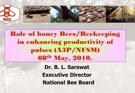Role of honey Bees/Beekeeping in enhancing productivity of pulses (A3P/NFSM) 08 th May, 2010. Dr. B. L. Sarswat Executive Director National Bee Board.