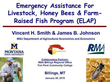 1 Emergency Assistance For Livestock, Honey Bees & Farm- Raised Fish Program (ELAP) Vincent H. Smith & James B. Johnson MSU Department of Agricultural.