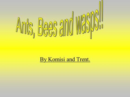 By Komisi and Trent.. What are bees? -Bees are flying insects which collect nectar from the pollen that is in wild flowers (dandelion, sunflower ect.)
