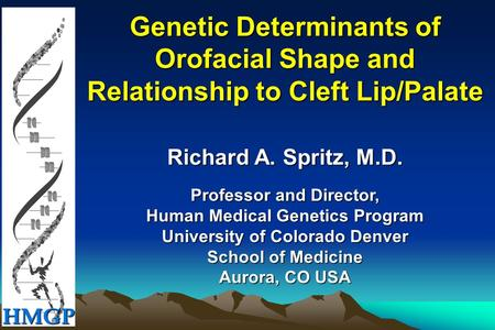 HMGP Genetic Determinants of Orofacial Shape and Relationship to Cleft Lip/Palate Richard A. Spritz, M.D. Professor and Director, Human Medical Genetics.