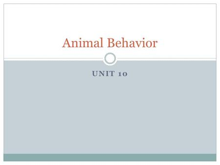 UNIT 10 Animal Behavior. Introduction Humans have always studied animal behavior  Knowledge of animal behavior = human survival  For example, understanding.