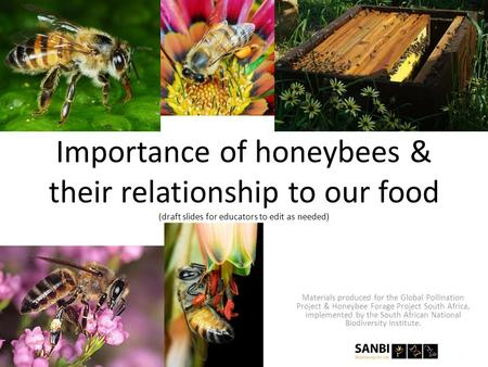 Importance of honeybees & their relationship to our food (draft slides for educators to edit as needed) Materials produced for the Global Pollination Project.