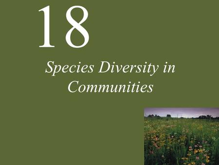 18 Species Diversity in Communities. 18 Species Diversity in Communities Resource Partitioning Nonequilibrium Theories The Consequences of Diversity Case.