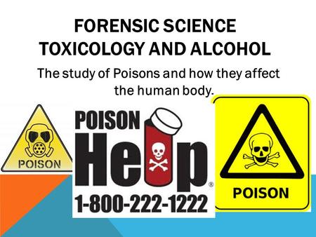 FORENSIC SCIENCE TOXICOLOGY AND ALCOHOL The study of Poisons and how they affect the human body.