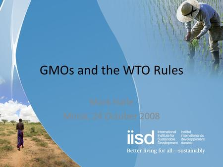 GMOs and the WTO Rules Mark Halle Minsk, 24 October 2008.