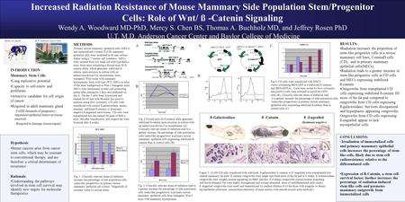 Increased Radiation Resistance of Mouse Mammary Side Population Stem/Progenitor Cells: Role of Wnt/ ß -Catenin Signaling Wendy A. Woodward MD-PhD, Mercy.