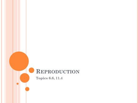 R EPRODUCTION Topics 6.6, 11.4. A SSESSMENT STATEMENTS 6.6.1 Draw and label diagrams of the adult male and female reproductive systems. 6.6.2 Outline.