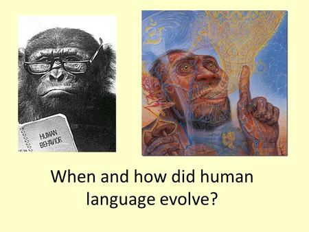 "When and how did human language evolve?. It's been called ""The hardest question in science""."