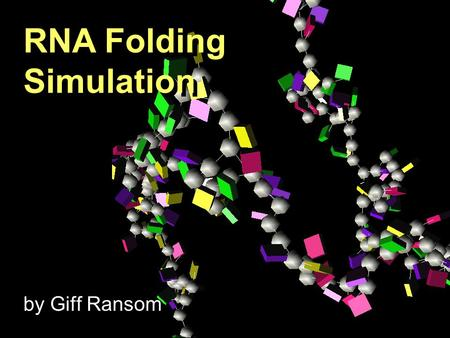 RNA Folding Simulation by Giff Ransom RNA Folding Simulation.