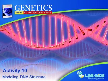 Modeling DNA Structure. Activity 10: Modeling DNA Structure LIMITED LICENSE TO MODIFY. These PowerPoint® slides may be modified only by teachers currently.