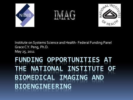 Institute on Systems Science and Health- Federal Funding Panel Grace C.Y. Peng, Ph.D. May 25, 2011.