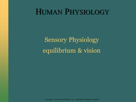 Copyright © 2004 Pearson Education, Inc., publishing as Benjamin Cummings H UMAN P HYSIOLOGY Sensory Physiology equilibrium & vision.