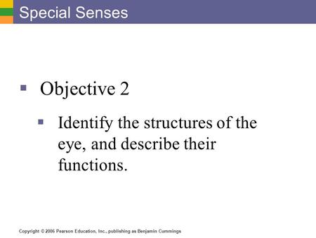 Copyright © 2006 Pearson Education, Inc., publishing as Benjamin Cummings Special Senses  Objective 2  Identify the structures of the eye, and describe.