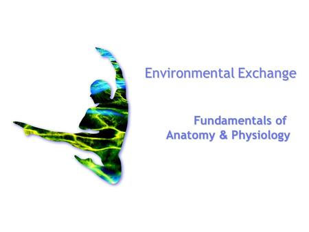 Environmental Exchange