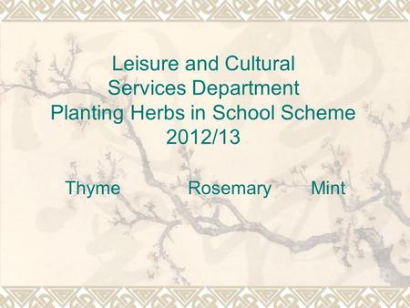 Leisure and Cultural Services Department Planting Herbs in School Scheme 2012/13 Thyme Rosemary Mint.