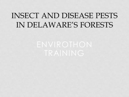 ENVIROTHON TRAINING INSECT AND DISEASE PESTS IN DELAWARE'S FORESTS.
