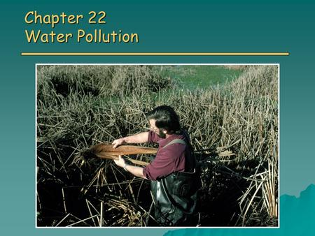 Chapter 22 Water Pollution. Overview of Chapter 22 o Types of Water Pollution Sewage Sewage Disease-causing agents Disease-causing agents Sediment pollution.