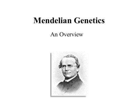 Mendelian Genetics An Overview.