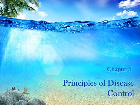 Principles of Disease Control Chapter 5. OBJECTIVES Clarify principles of disease control.