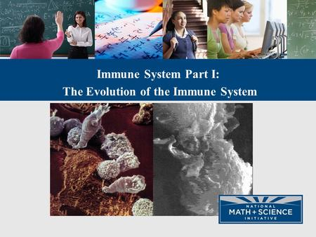 Immune System Part I: The Evolution of the Immune System.