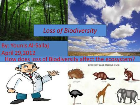 Loss of Biodiversity By: Younis Al-Sallaj April 29,2012 Loss of Biodiversity How does loss of Biodiversity affect the ecosystem?