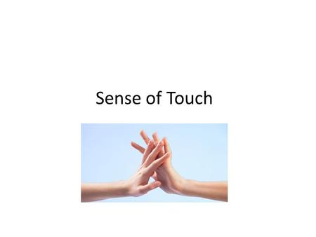 Sense of Touch.