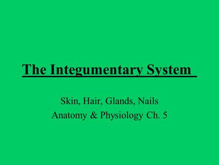The Integumentary System Skin, Hair, Glands, Nails Anatomy & Physiology Ch. 5.