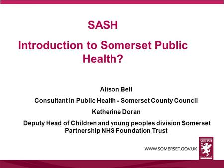 SASH Introduction to Somerset Public Health?