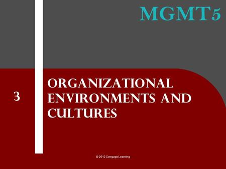 Organizational Environments and Cultures