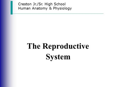 Creston Jr./Sr. High School Human Anatomy & Physiology The Reproductive System.
