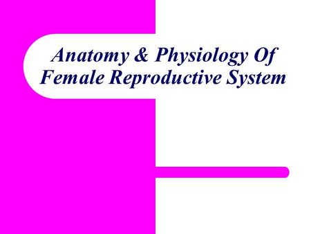Anatomy & Physiology Of Female Reproductive System.