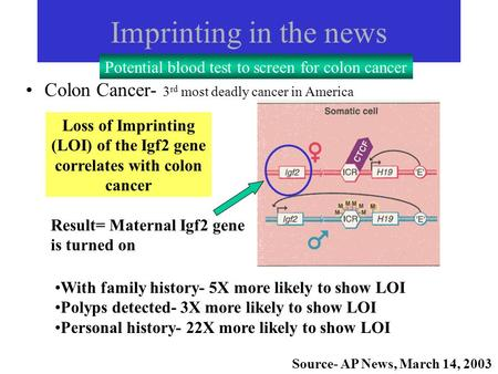Imprinting in the news Colon Cancer- 3 rd most deadly cancer in America Loss of Imprinting (LOI) of the Igf2 gene correlates with colon cancer With family.