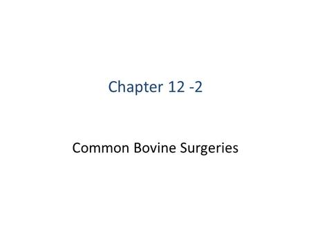 "Common Bovine Surgeries Chapter 12 -2. ""A dream doesn't become reality through magic; it takes sweat, determination and hard work."" - Colin Powell."