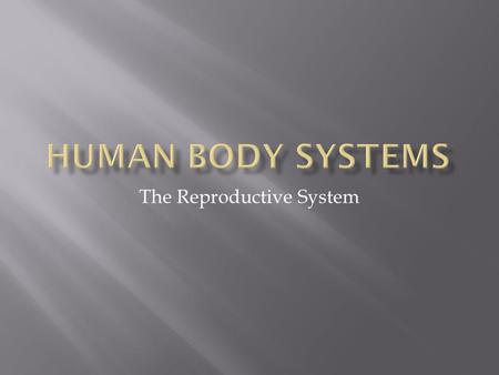 The Reproductive System. SC.912.L.16.13 Describe the basic anatomy and physiology of the human reproductive system. Describe the process of human development.