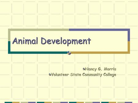Animal Development Nancy G. Morris Volunteer State Community College.