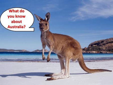 What do you know about Australia?. Today's Standard SS6G12 The student will be able to locate selected features of Australia.
