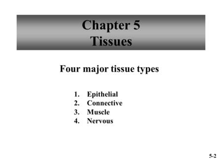 Chapter 5 Tissues Four major tissue types 1. Epithelial 2. Connective 3. Muscle 4. Nervous 5-2.