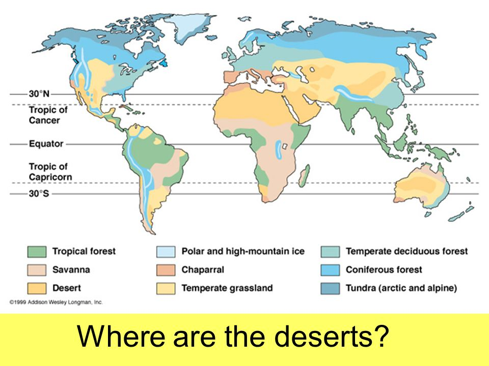 Task One: Location of Deserts Using a map of global biomes, mark onto a blank world map the location of Deserts .