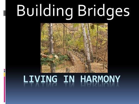 Building Bridges Today's Questions  1. What books of the bible are we learning from today?  2. What did one brother want the carpenter to build and.