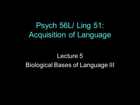 Psych 56L/ Ling 51: Acquisition of Language Lecture 5 Biological Bases of Language III.